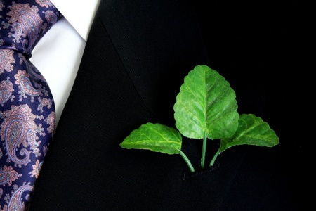 Black suit, shirt and tie with three green leaves on lapel