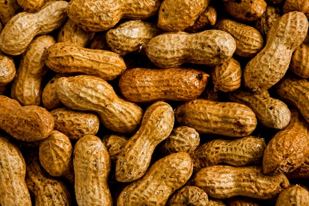 A bunch of peanuts in shells moistened with water