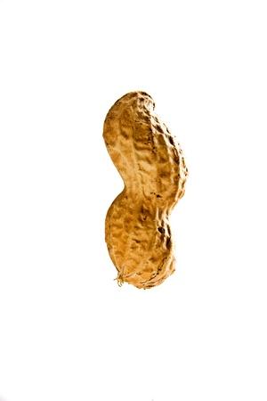 Isolated closeup of peanut on white background