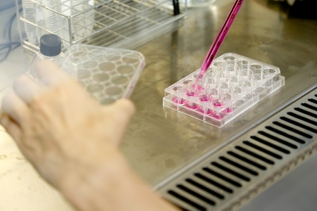 Clean Bench for cell culture experiments in cancer research