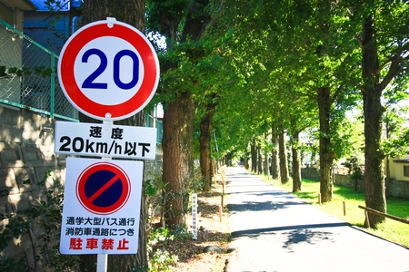 limitation: Speed Limitation 25 sign on the loacal road with tree in spring season Stock Photo