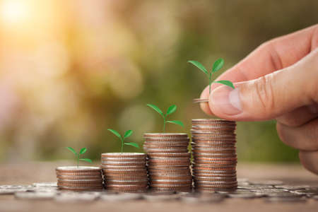 Hand putting stack coins for growing with sun light bokeh background and tree growing on coin. Financial, Investment and Business and Save Money concept. 스톡 콘텐츠