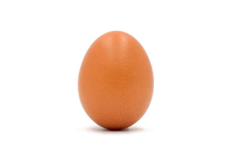 Brown chicken egg  taken near the details clearly on the white background. Stock Photo