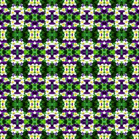 viola: Beautiful background pattern made from Viola cornuta texture Stock Photo