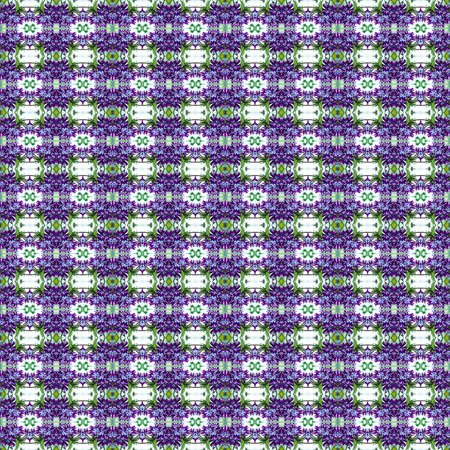 violet flower: Beautiful background pattern made from Violet Flower texture