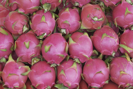 Red fruit dragon fruit for health lovers.