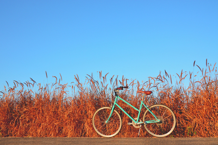 beautiful landscape image with Bicycle on road with blue sky