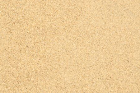 Natural sand texture. Sandy background