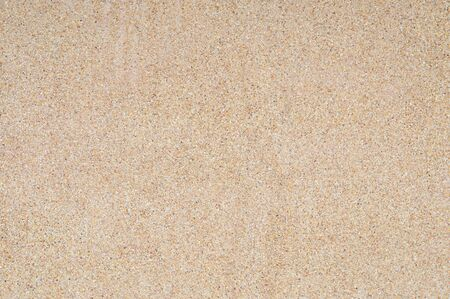 Washed sand texture and background. Wall made from fine and coarse sand washing mix with cement mortar.