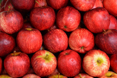 Red apples large quantities in the supermarket as background