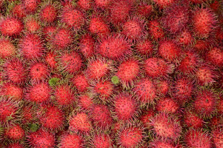 Pile of ripe rambutan local Thailand fruits at the market use for background or wallpaper.