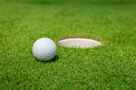 golf field: Golf ball on the green