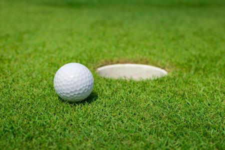pelota: Pelota de golf en el verde