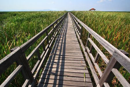 Wood bridge at sam-roy-yod Nation Park ,Prachuapkhirikhan Province ,Thailand photo