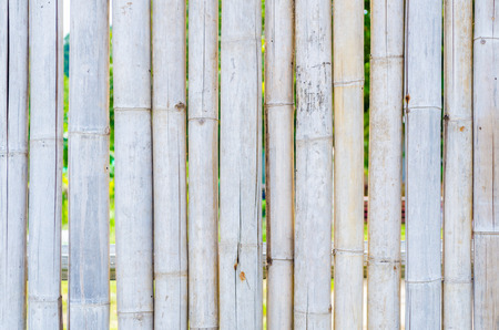 primarily: Bamboo fencing is primarily a natural home