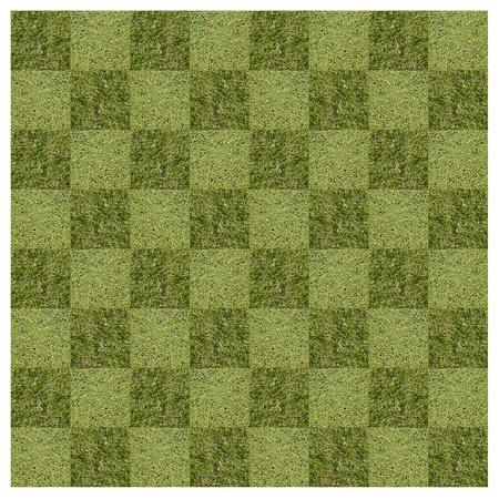 Modern art design using turf as a checkerboard Stock Photo - 8395864