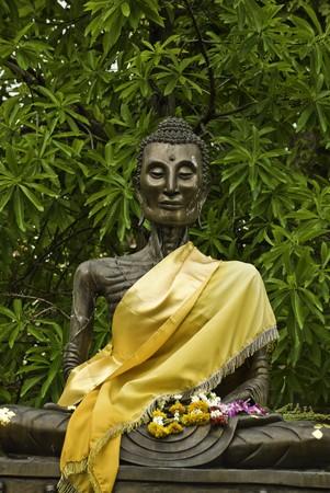 Buddha statue in Watsutus temple at Bangkok Thailand photo