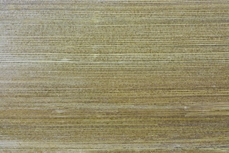 texture in Cedar wood  for roof Stock Photo - 7372208