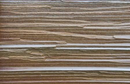 texture of cedar wood in natural Stock Photo - 7773932