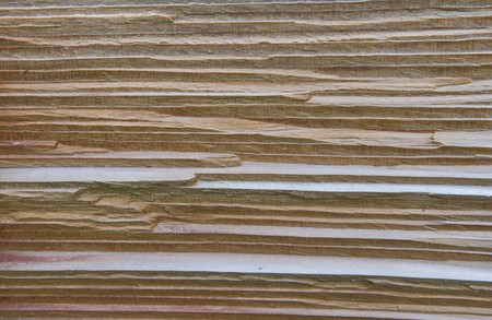 texture of cedar wood in natural photo