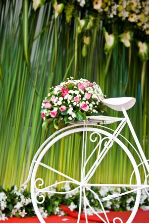 bike with flower on green background