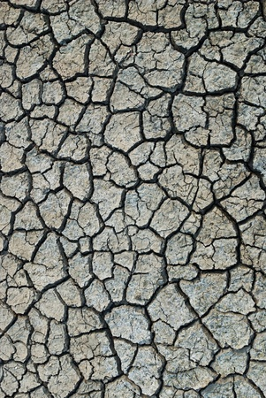 Dry and cracked earth background Stock Photo - 8339998