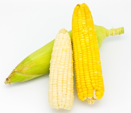 Fresh corn on white background photo