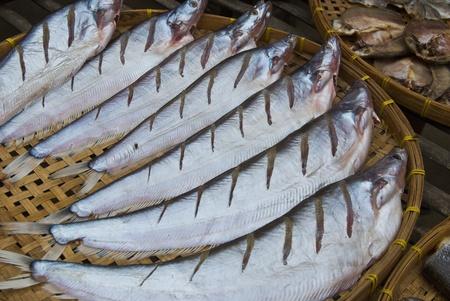 sheatfish: Sheatfish seco, en un c�rculo en placa de bamb�, Siluridae