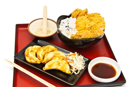 Japanese food style, rice with fried chicken and Fried Dumplings Stock Photo - 9731172