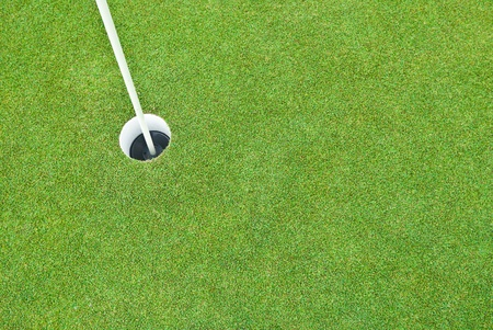 Beautiful green grass pattern from golf course Stock Photo - 10108484