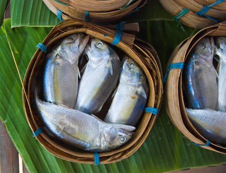Mackerel fish in bamboo basket at market, Thailand Stock Photo - 10252561