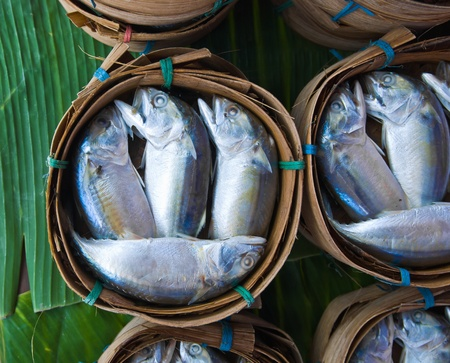 Mackerel fish in bamboo basket at market, Thailand Stock Photo - 10425028