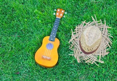 folk music: hawaiian traditional instrument ukulele guitar with hat on green grass