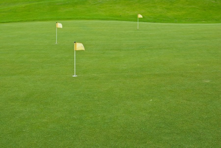 Beautiful green grass pattern from golf course Stock Photo - 10600606