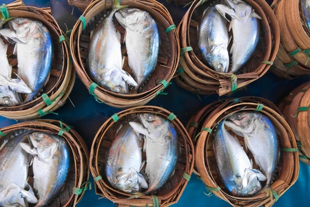 Mackerel fish in bamboo basket at market, Thailand Stock Photo - 10891224