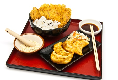 Japanese food style, rice with fried chicken and Fried Dumplings photo