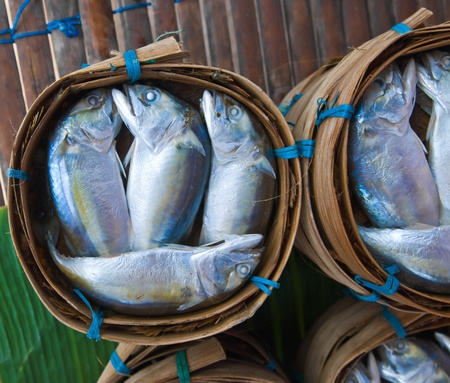 Mackerel fish in bamboo basket at market, Thailand Stock Photo - 11449971