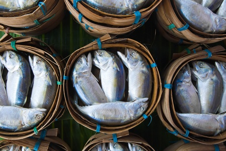 Mackerel fish in bamboo basket at market, Thailand Stock Photo - 11689626