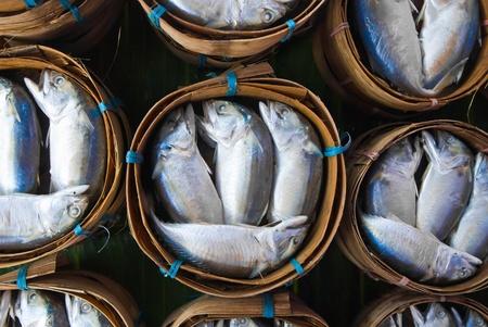Mackerel fish in bamboo basket at market, Thailand Stock Photo - 12177667