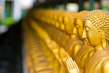 View of buddha statue in Thailand Stock Photo - 12177726