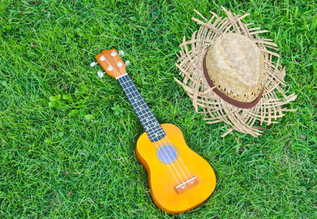 hawaiian traditional instrument ukulele guitar with hat on green grass