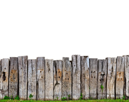 old wooden fence in garden with plant photo