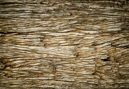 Close up  pattern of old wood surface Stock Photo - 14027194
