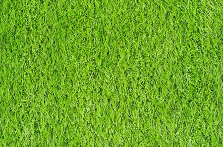 人工の緑の芝生フィールド トップ ビュー テクスチャ