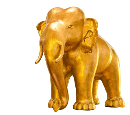 golden elephant standing isolated on white background photo
