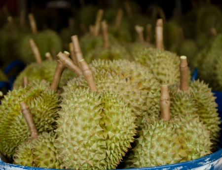 Fresh durians, the king of fruit in market at Thailand photo