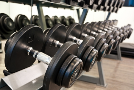 exercise equipment: Weights,  many black dumbbell in fitness room