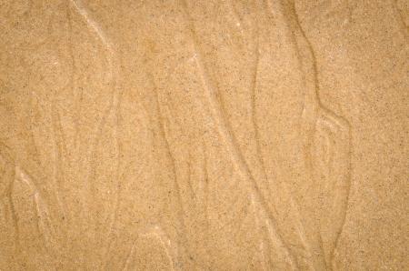 cours d eau: pr�s la nature de fond de mod�le de sable humide du cours d'eau d'une plage en �t�
