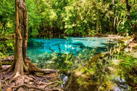 Sa Nam Phut is beautiful spring pool formed from the hot spring under the earth crust which is indigo blue and pop op  on the time in the forest national park at Krabi province, Thailand photo