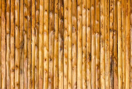 background  pattern nature detail of wood texture decorative furniture surface photo
